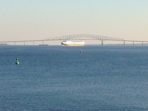 We got to see a ship docking.