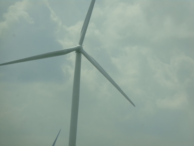 Their were MILES of windmills in Kentucky.