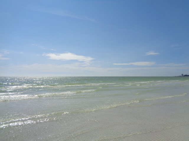 View of Siesta Beach.